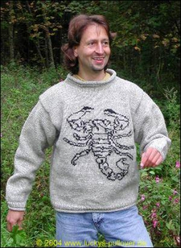 Pullover with Scorpion